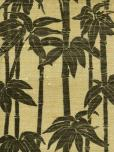 Astek Trop18blackivory Grasscloth Wallpaper