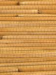 Astek Ws335 Bamboo and Grass Wallpaper