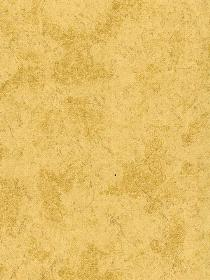 Warner 986138 Vinyl Coated Paper with Metallic Color Wallpaper