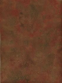 Patton Wallcovering Ft23535 Vinyl Protected Wallpaper