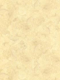 Patton Wallcovering Kt15511 Vinyl Protected Wallpaper