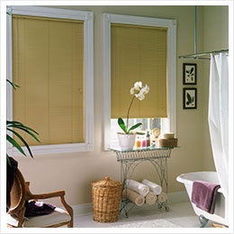 Bathroom Window Blinds And Shades Steve S Blinds